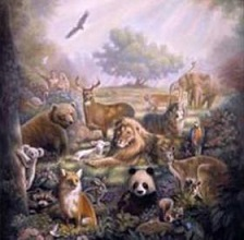 Are animals in heaven too?