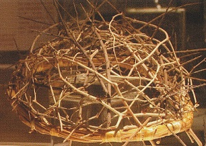 Jesus' crown of thorns